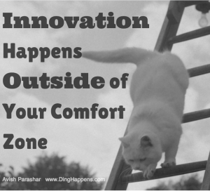 Innovation Comfort Zone Cat Ladder